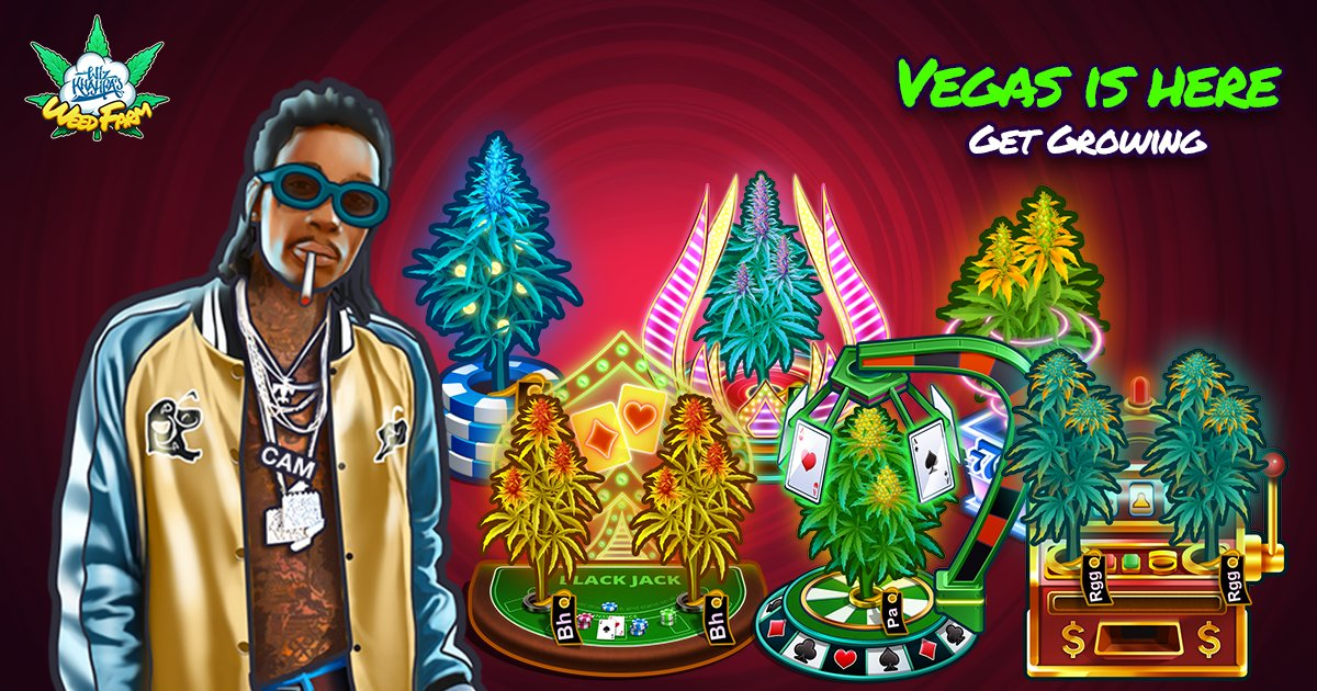 Grow KK in Vegas. ���������� @wizweedfarm https://t.co/785GdnYEvh https://t.co/NId6SNed9a
