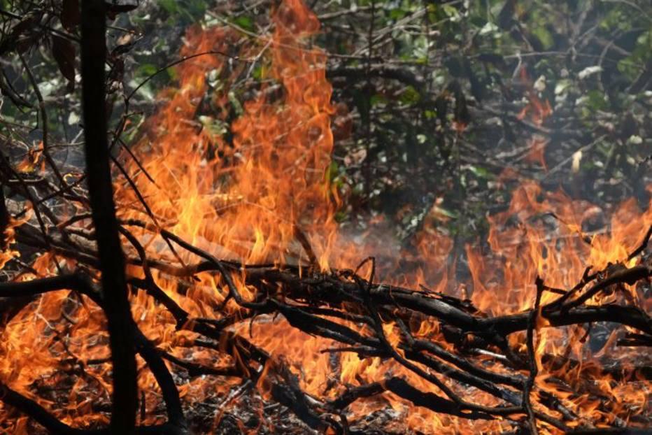 País registra recorde de focos de incêndio em setembro