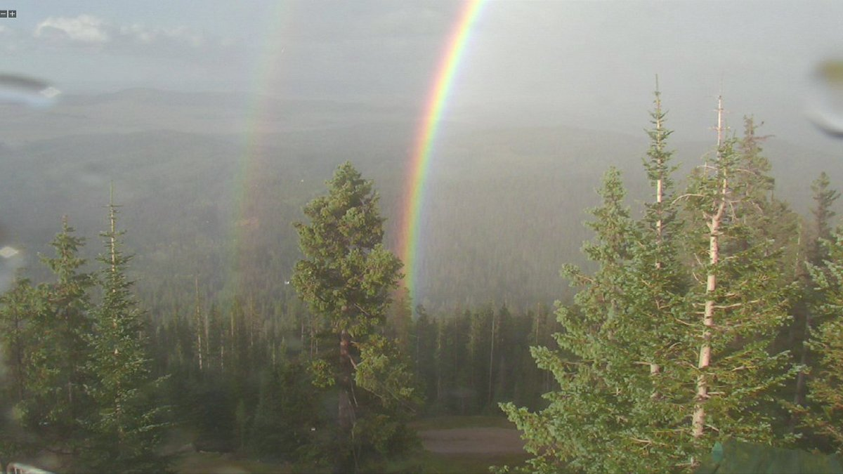 Quite the #Rainbow up in #Pinetop right now! #Arizona https://t.co/8jwtLIUnkG