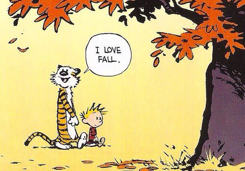 Ditto. #CalvinandHobbes #firstdayofautumn #fall https://t.co/phaSkebLCZ