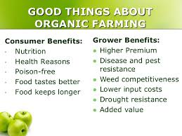 Good things about organic farming #foodsecurity #startup #nature #agricofarms https://t.co/HrEItNOJq4
