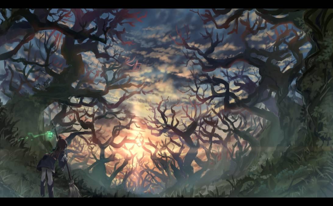 アルクトゥルスの森   餠 #LWA_jp #pixiv