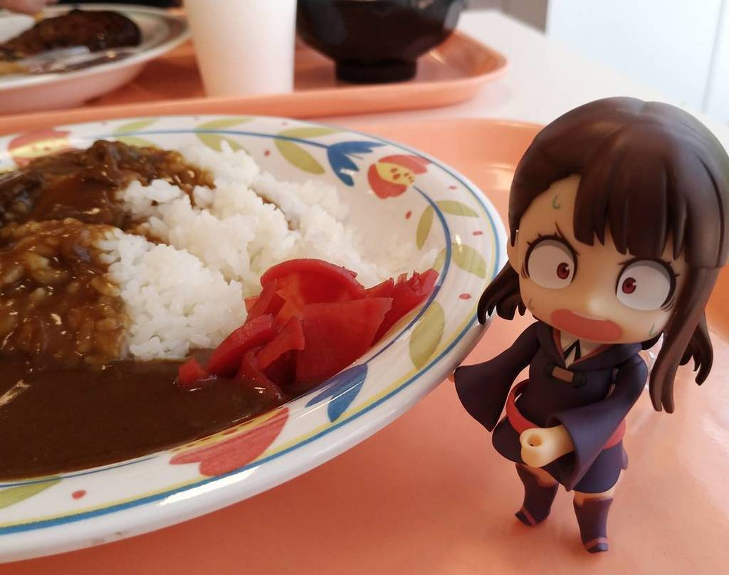近くの高校の学園祭に潜入学食のカレー320円!.#学園祭 #lwa_jp #リトルウィッチアカデミア #アツコカガリ #