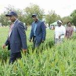 Kenya economically stable, food-secure despite politics - CSs Rotich, Bett