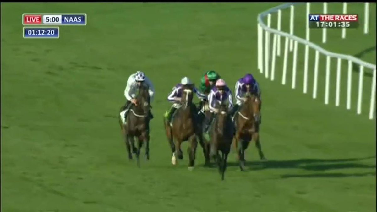 A smart performance from Saxon Warrior who remains unbeaten and lands...