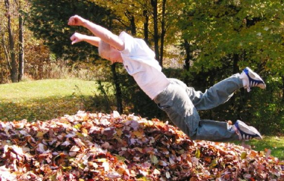 Leaf pile jumping is expected to be a part of the 2020 X Games #FakeA...