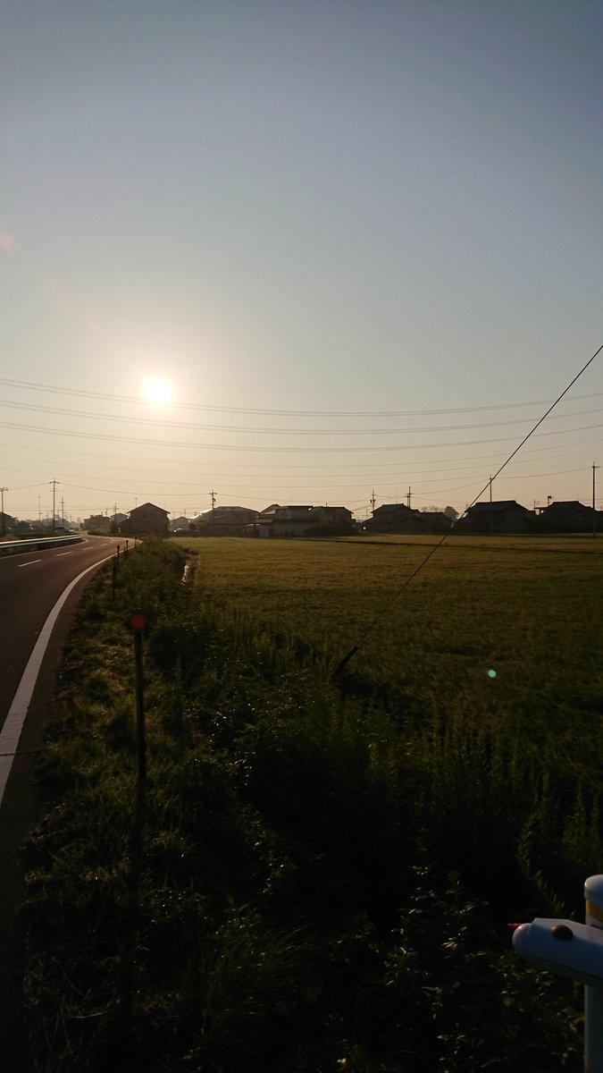 この道を朝イチで通学。ガンダムユニコーンのユニコーンという音楽を聞くとかなりいい!あとは、澤野さんの先日発売のCDとか力