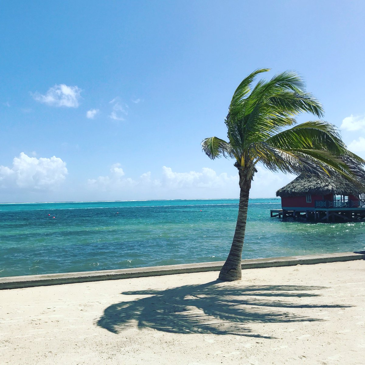 test Twitter Media - Beautiful Belize.  #ttot https://t.co/hXwaQyEY3q