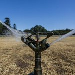 Record dry spell sends Sydney's water use soaring