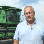 IC farmers say crop quality tops quantity in choosing when to harvest