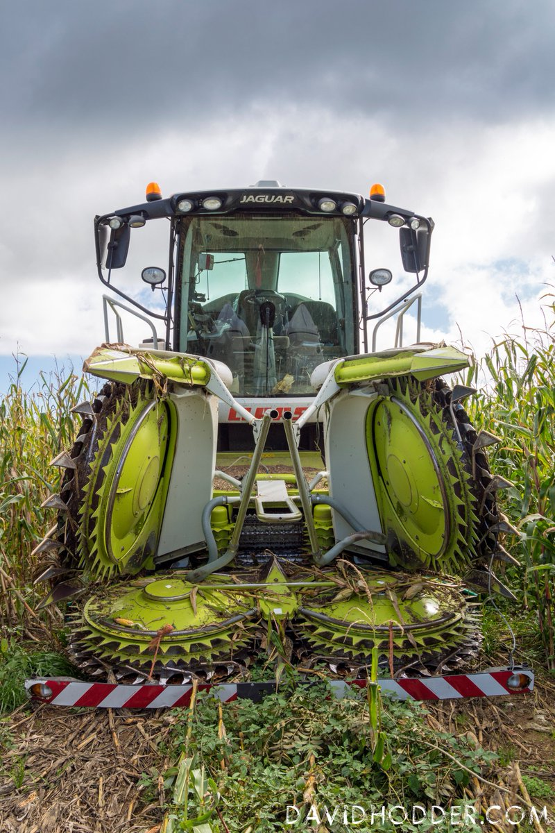 test Twitter Media - Claas Jaguar 850, ready to transform into a #maize munching mega #machine. #farming #devon @FarmersWeekly #photography https://t.co/oLDcWQmxFM
