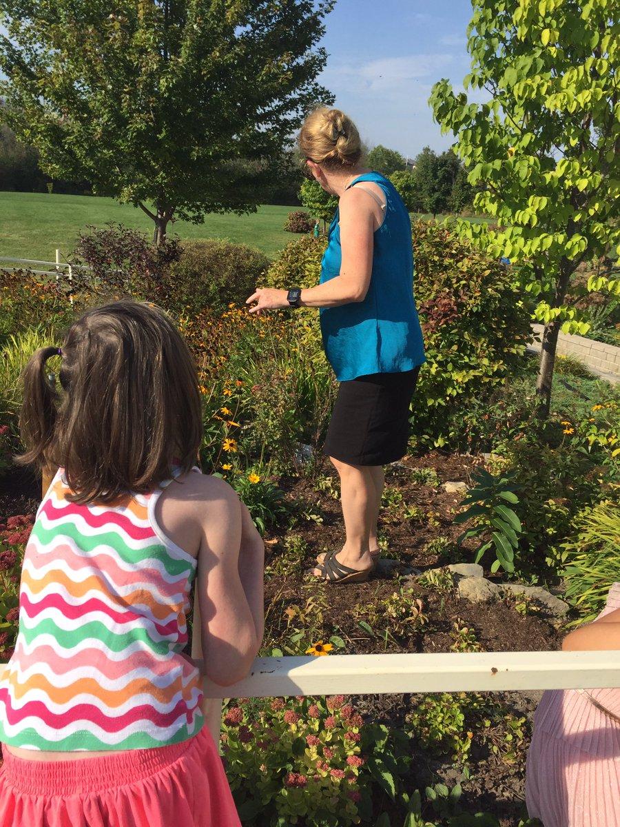 test Twitter Media - Checking out leaves for nature journal!!!#ottawaschools#natureschool #howgreenisourgarden https://t.co/SXmu58iXJk