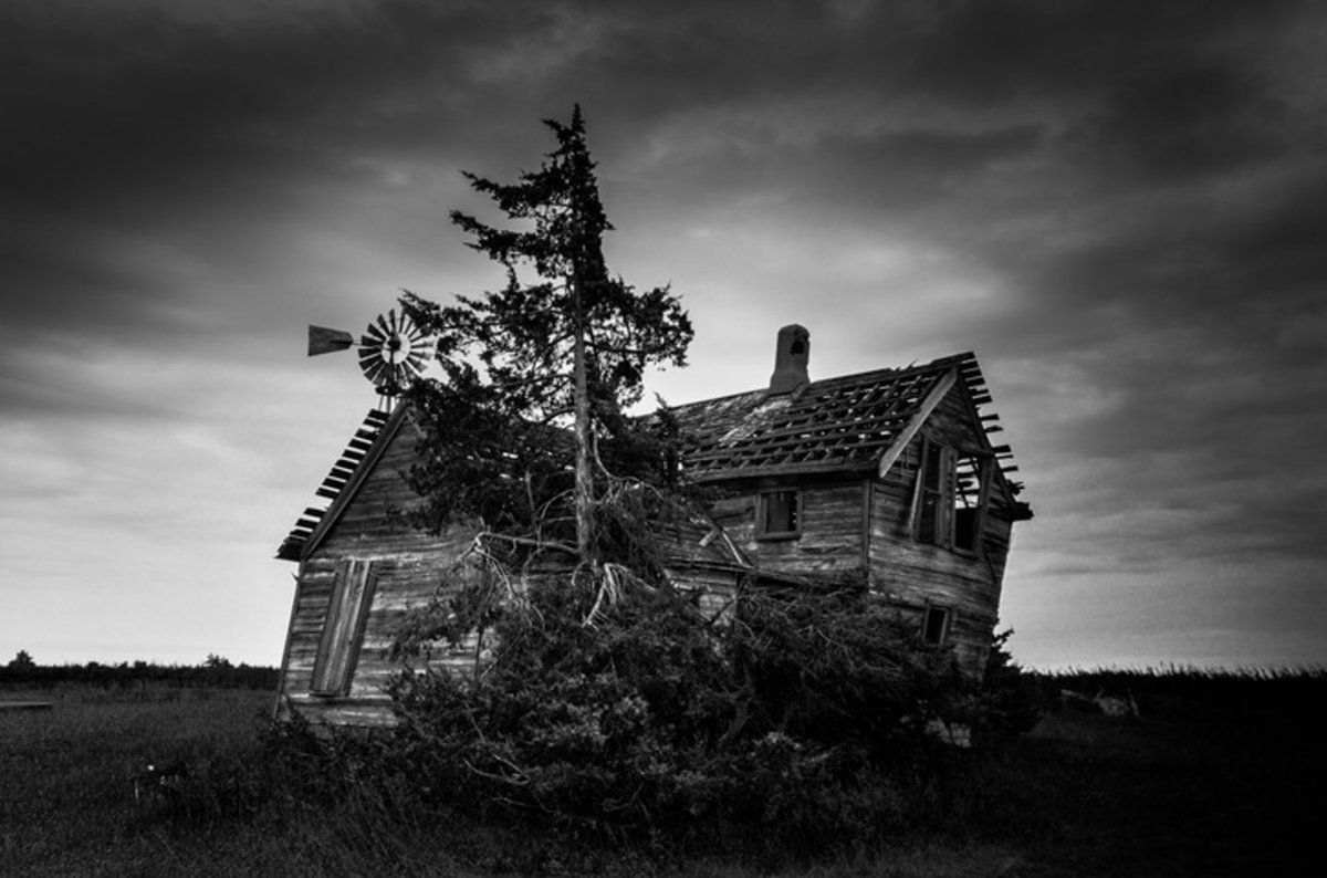 Post some black and white photos you've taken: https://t.co/s7dJ4U8DmD https://t.co/LfCBkPbfc9