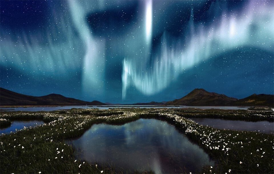 RT @PictUremember: Northern Light Over Wildflowers, Iceland | Photo by Alexander Vijay Smith https://t.co/0HuqLQ6KEz
