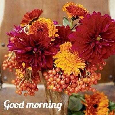 Mr.Amitabh bachchan sir happy birthday to you and my little gattoo (Priyaka) happy birthday