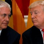 Who's the moron? Trump challenges Tillerson to IQ test