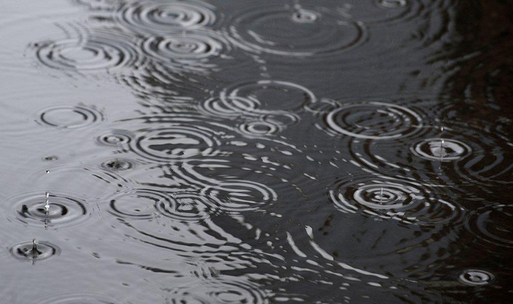 Metro Detroit forecast for Wednesday: rainy, cooler