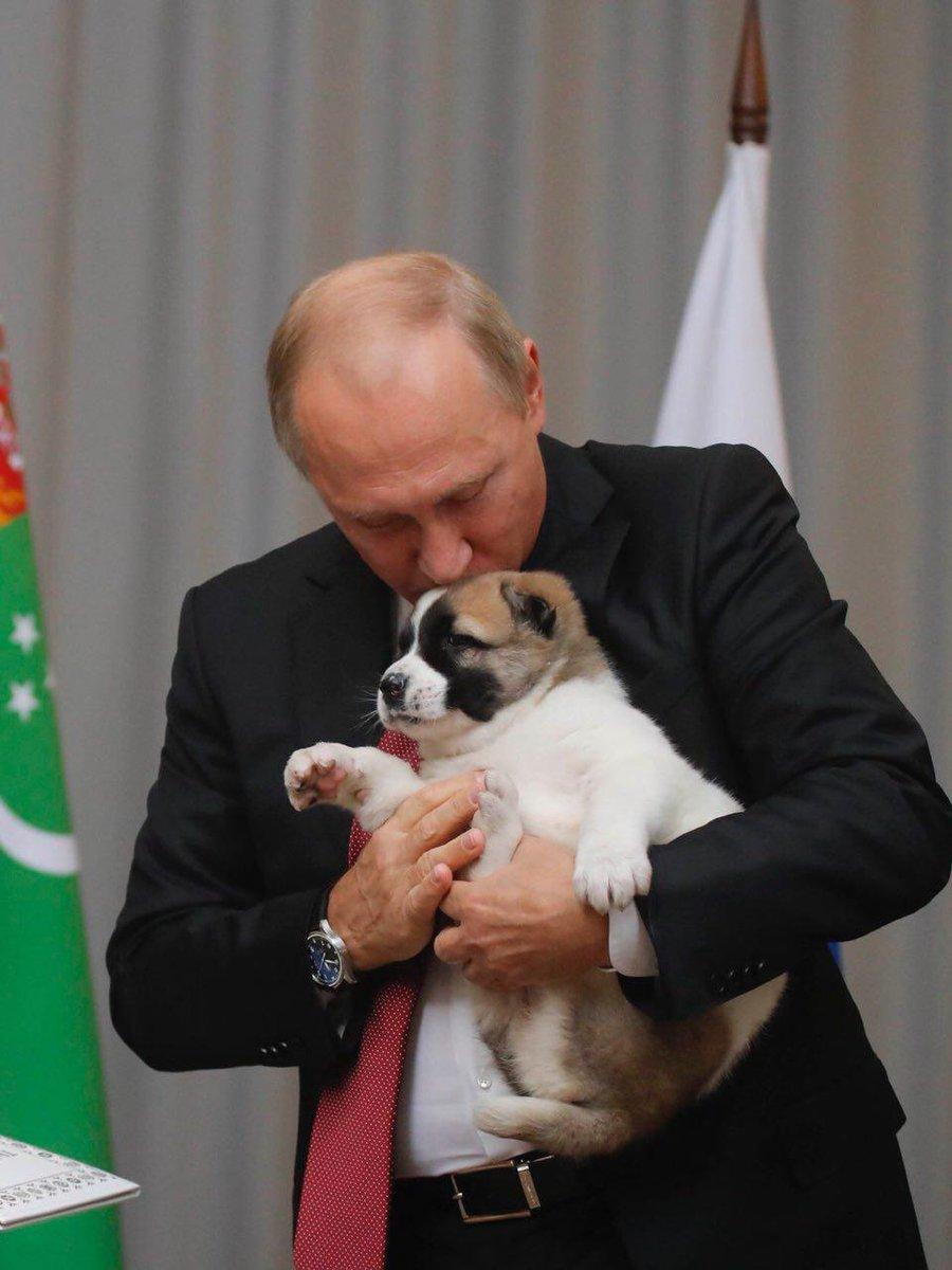 Студентки журфака МГУ подготовили Путину необычный подарок 3