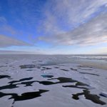 Artic - Pacific exchange to explore cultural links