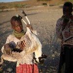 3.4 million facing risk of starvation