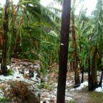 Hailstorm destroys schools, seven homes