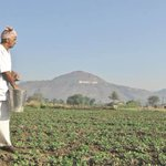Need policy rejig to promote climate-smart agriculture:NRAA