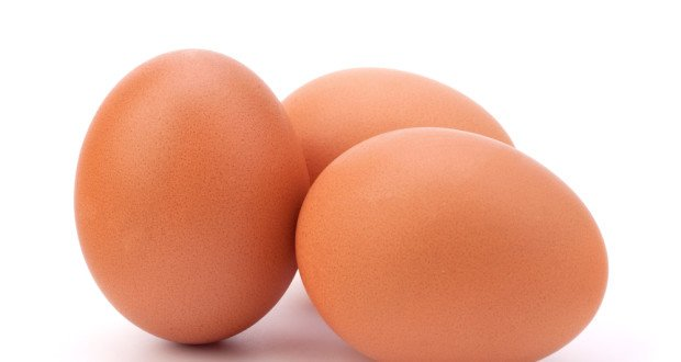 Poultry producers import hatching eggs from Europe | The