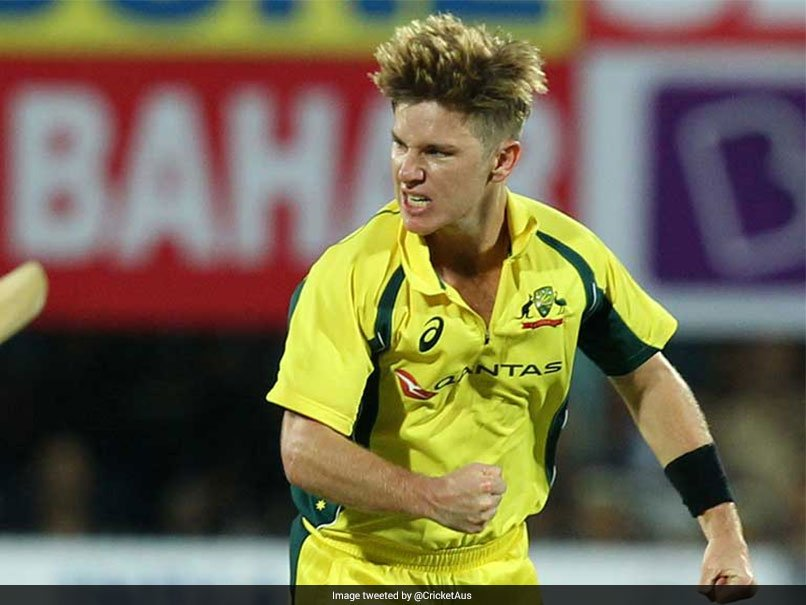 India vs Australia, 2nd T20I: What Prompted Adam Zampa's Wild Celebration After MS Dhoni's Wicket