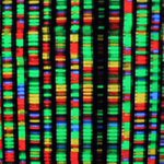 Nobel Laureate: The Future of DNA Sequencing Will Be in the Palm of Your Hand