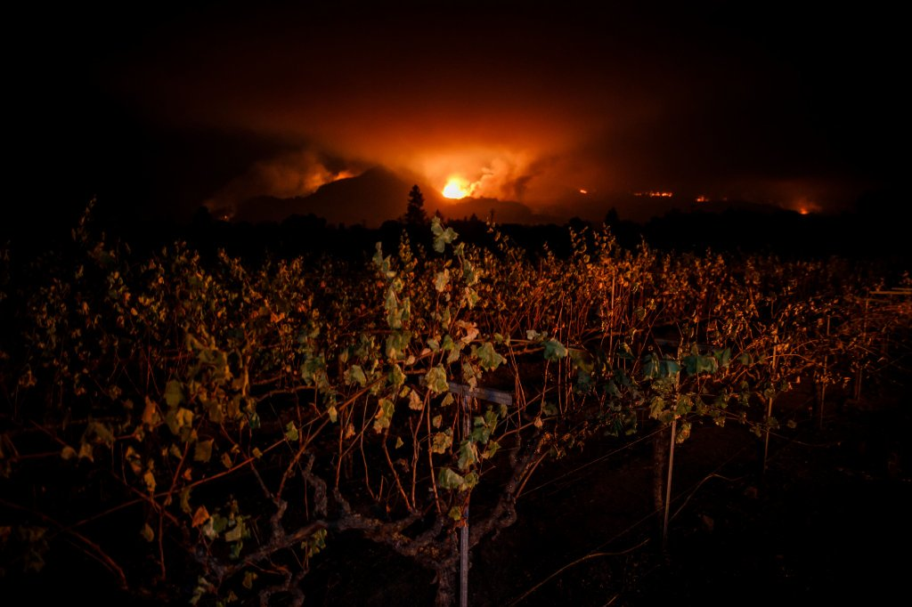 Did vineyards keep wine country fire from getting worse? https://t.co/lOPndFubW0 https://t.co/5zYPXWeiRA