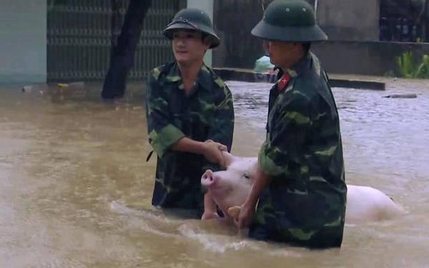 Floods, landslips in Vietnam kill 37 people; thousands evacuated