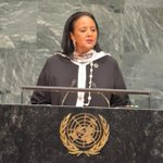 CS Amina named one of UN General Assembly president's advisers