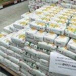 Unga group posts losses despite duty free maize