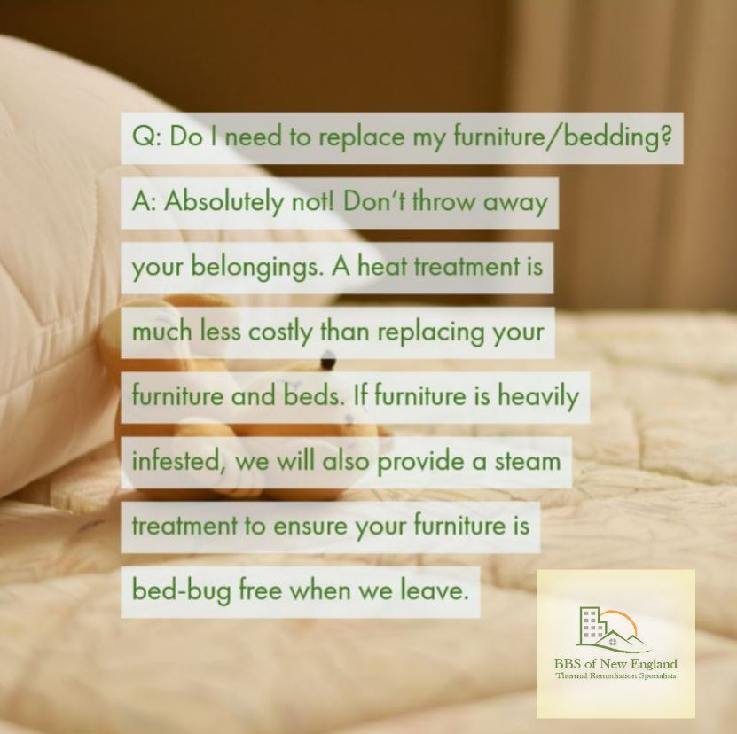 test Twitter Media - Check out our website for more frequently asked questions on bedbugs and schedule services today! https://t.co/2s9AObVP0A