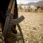 Pokot leaders want perpetrators of banditry arrested