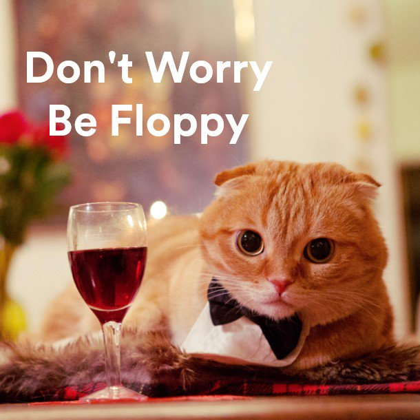 5. @shramptonthecat - Don't Worry Be Floppy https://t.co/CT4qFp07gh https://t.co/NCks2TvpPo