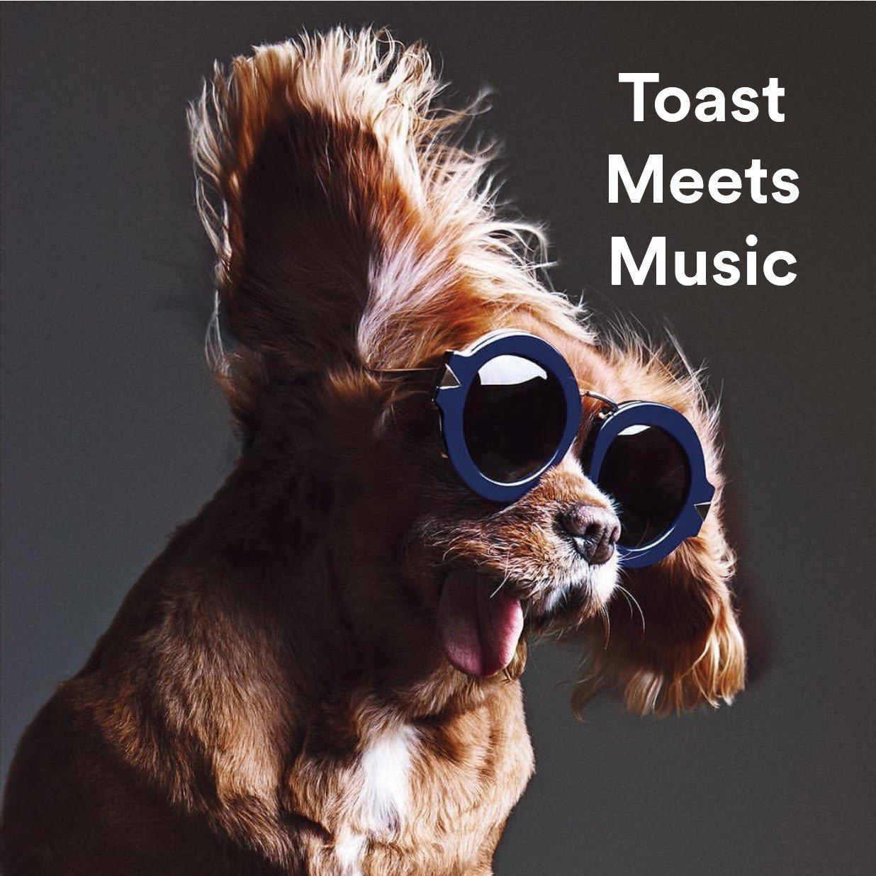 7. #ToastMeetsWorld - Toast Meets Music https://t.co/ZBbNC3WUH7 https://t.co/heX0eFXDXC