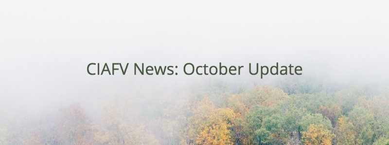 test Twitter Media - CIAFV October Update:  https://t.co/02poVB0d30  #EndDV #YEG https://t.co/pkKr9MtgvH
