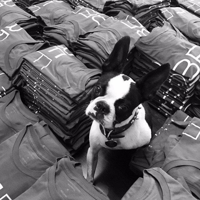 test Twitter Media - Join @EmilyRobison on her collab #BEforlove w/Lee Jones Collection! All profits benefit @komera_ & @girls_inc. Shop: https://t.co/Kgrg4oiqPo https://t.co/SSUdR03Fg3