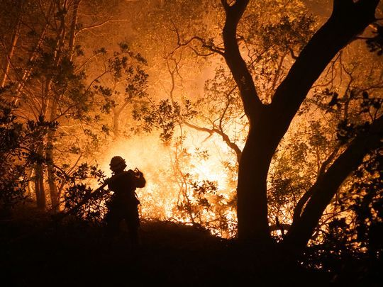 """That could be my death."": Monk recalls escape from lethal California wildfires:"