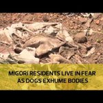 Migori residents live in fear as dogs exhume bodies