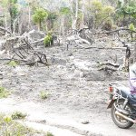 Five pay the price for lighting bush fires at Uluguru reserve