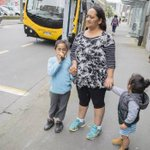 Low income Wellington families choosing between food and public transport