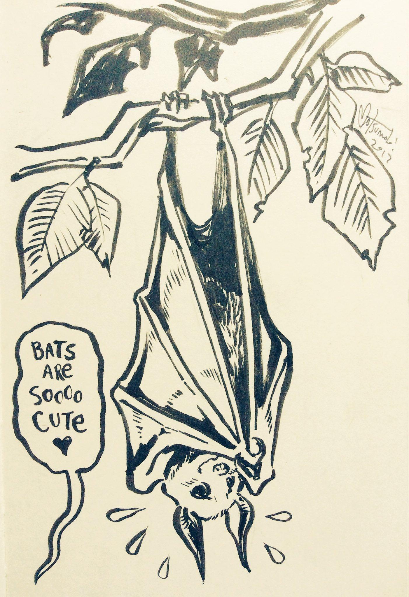 #Inktober day 7: 'shy bat' https://t.co/DMTHdJjIsE