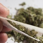 Marijuana leads to changes in brain function, increases violent behaviour: Research