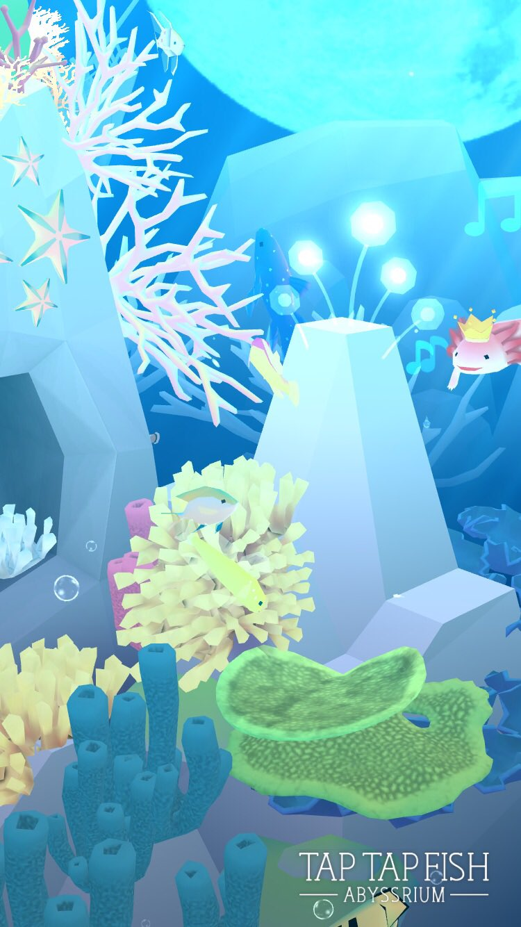 My Diadem Dottyback:)  #taptapfish Download: https://t.co/hRrGQHAdGt https://t.co/vhzp8GmEPo