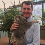 $2 million centre to boost Brisbane's reputation as koala capital