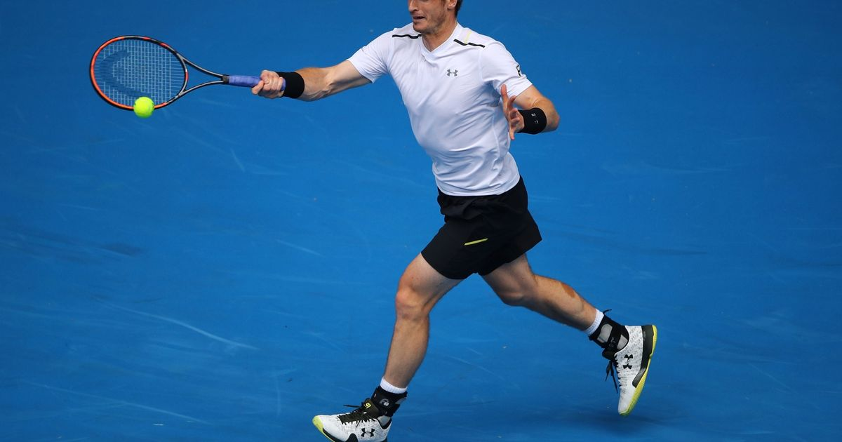Andy Murray will recover from thigh injury in time to play in Australian Open, says tournament director