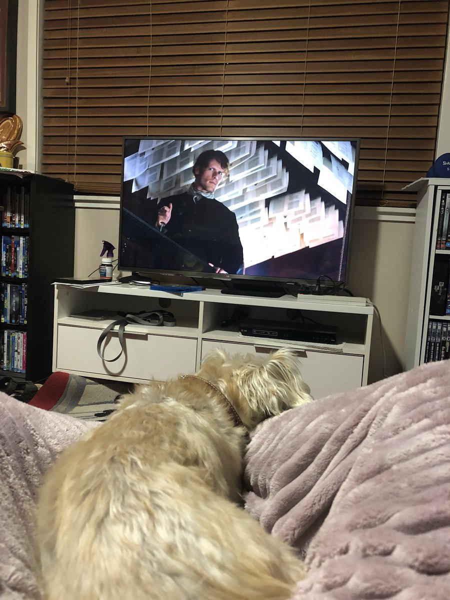 Puppy cuddles and @SamHeughan on my screen? Tonight is a good night. #Outlander https://t.co/q4lVPAHeeG