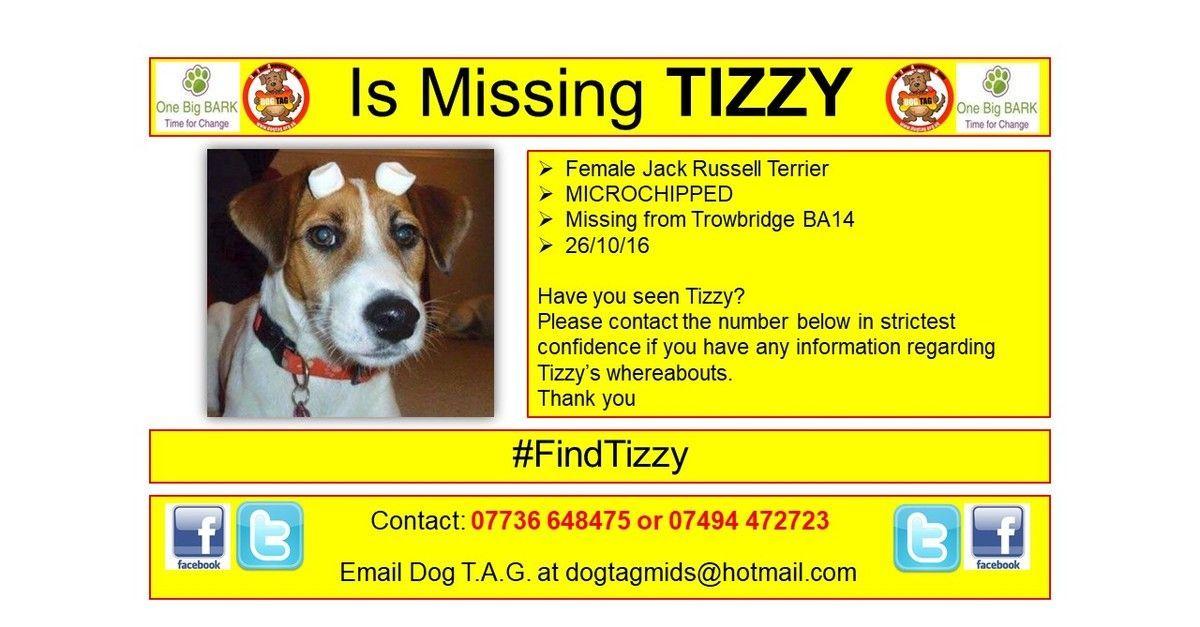 RT @DogTAGMids: #FindTizzy #thunderclap 27/10 #lostdogalert https://t.co/S65ghpDt6Y https://t.co/flRsxttIUw